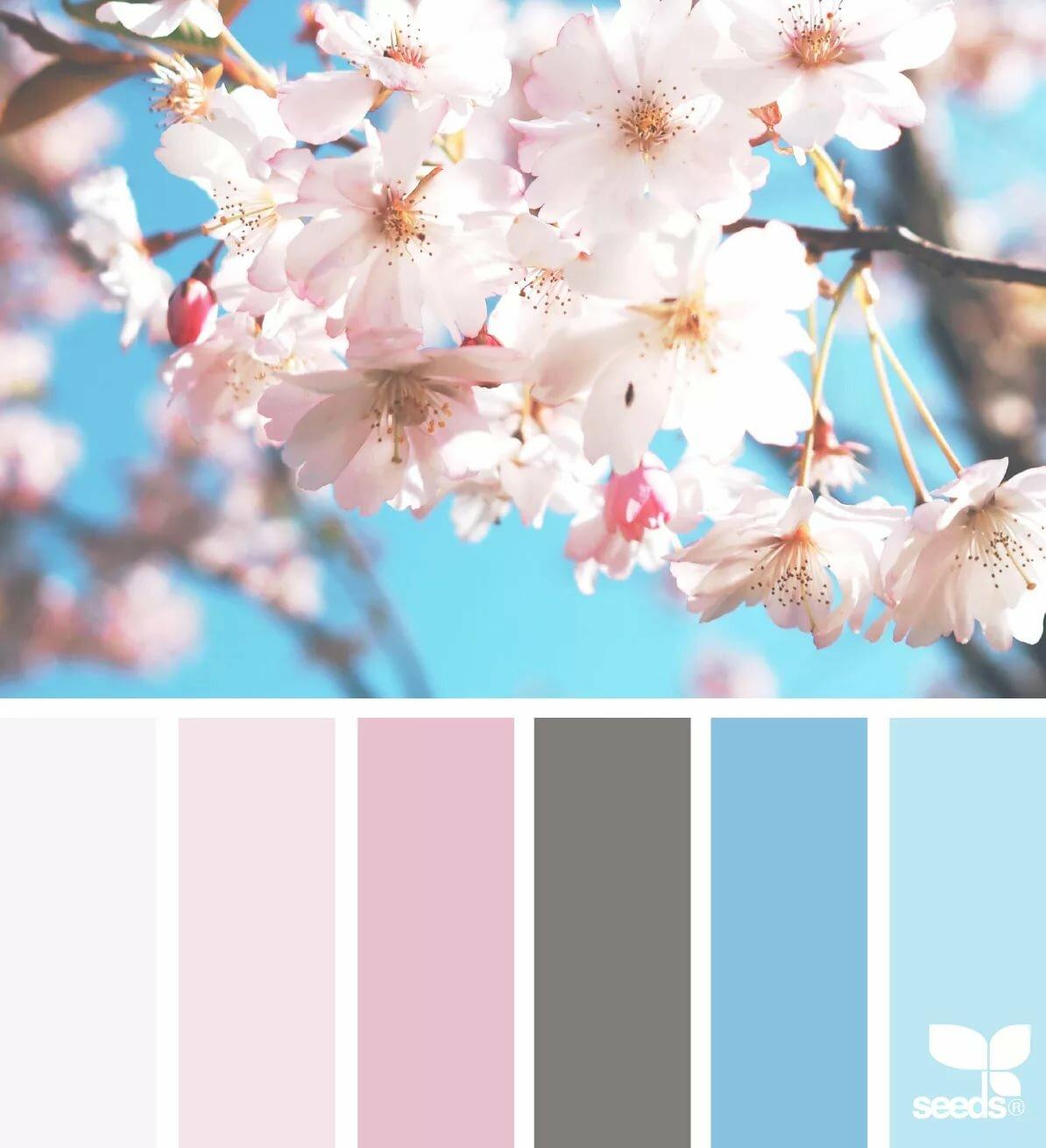Картинки по цвету подборки для детей